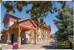 steamboat hotel pet friendly steamboat springs, alberta canada hotels dog friendly